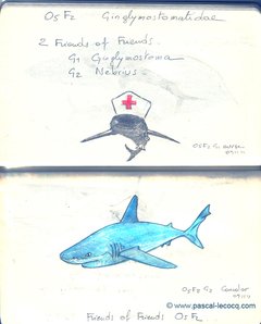 Carnet Bleu: Encyclopedia of…shark, vol.I p32 by Pascal
