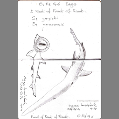 Carnet Bleu: Encyclopedia of…shark, vol.V p6 by Pascal