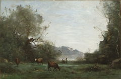 Cattle at Pasture in a Wooded Valley