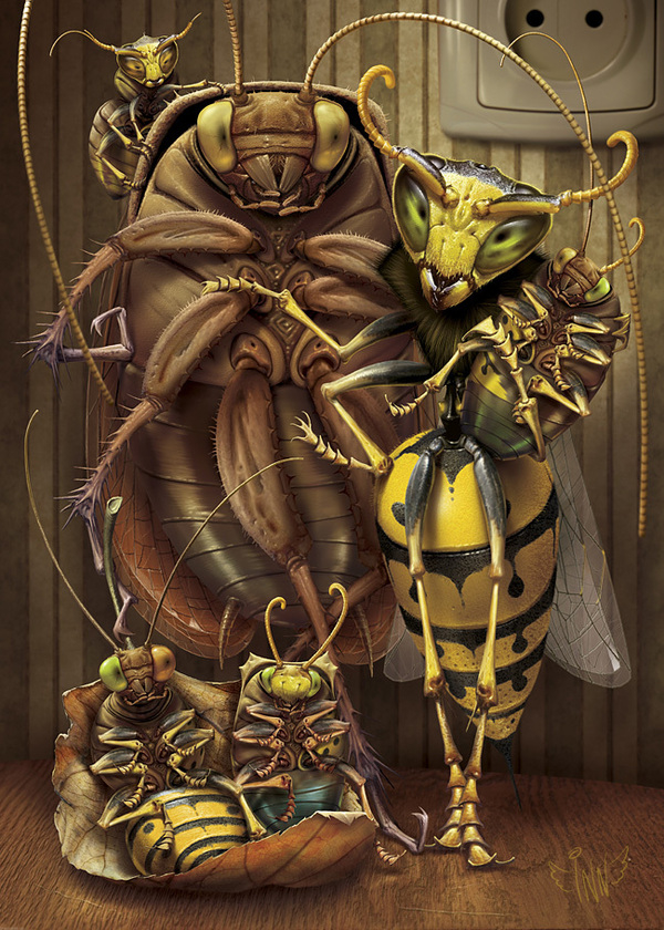 Family of Insects