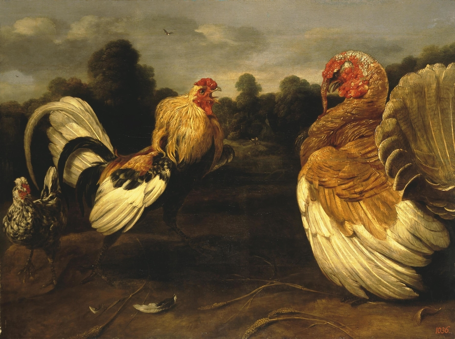 Fight of a Rooster and a Turkey Cock