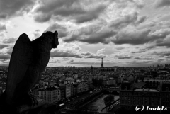 Guarding Paris