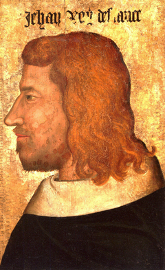 King John II of France in profile