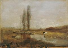 Moorlandschaft bei Lundenburg