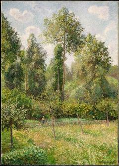 Poplars, Éragny