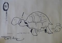Tortoise Racing