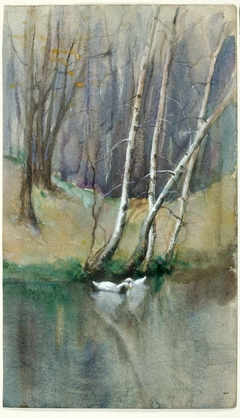 Untitled (Wood Scene with Birch Trees and Ducks)