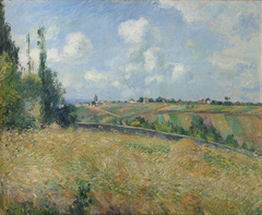 A Rye Field, Hill of Gratte Coqs, Pontoise