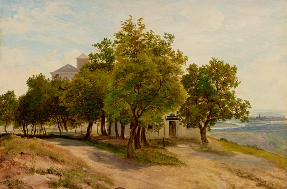 Baumgruppe auf dem Kahlenberg mit Blick auf Wien