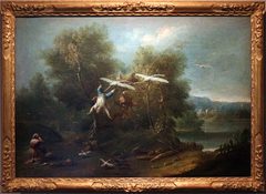 Bertoldino flying tied to geese