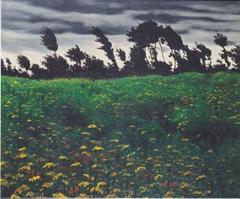 Blooming Field