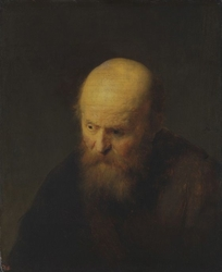 Bust of an old man with a bald head