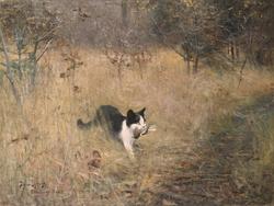 Cat Hunting Birds