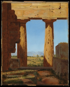 Columns of the Temple of Neptune at Paestum