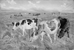 Grazing Cows on the Island of Saltholm
