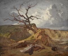 Landscape near the Sea