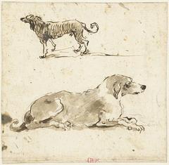 Liggende en een lopende hond