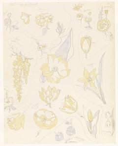 Ontwerpen voor aardewerkdecoratie: zes tulpen en andere bloemen