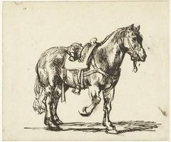 Paard van de Barmhartige Samaritaan