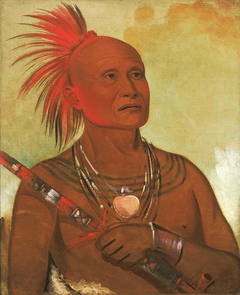 Pam-a-hó, The Swimmer, One of Black Hawk's Warriors