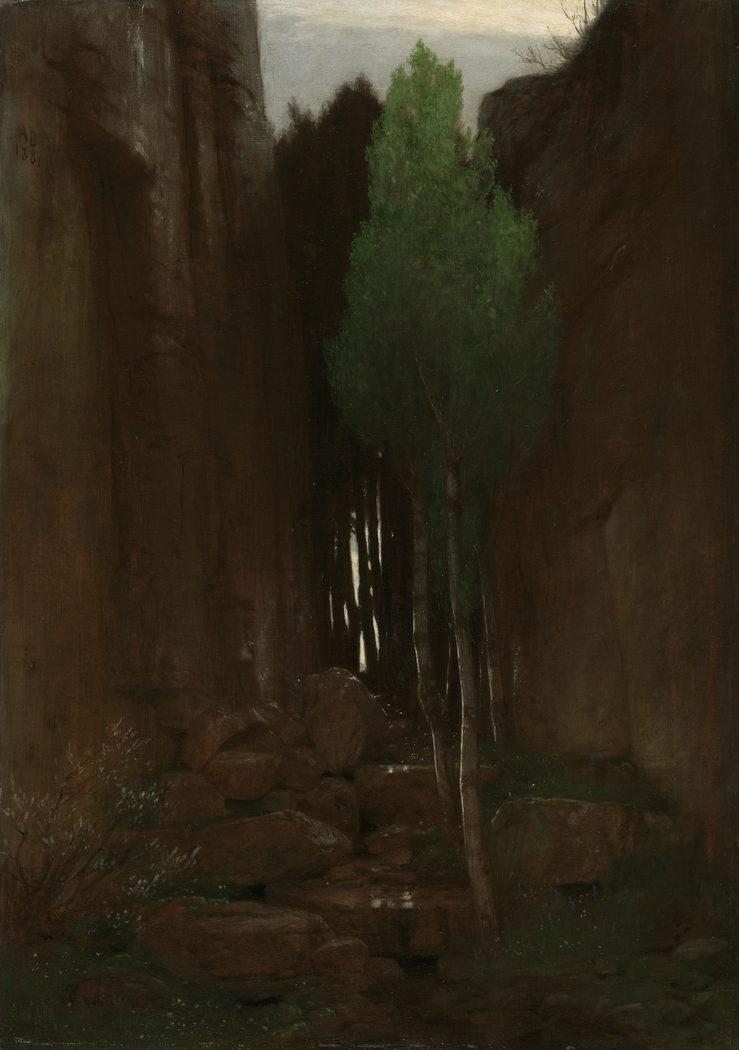 Quell in einer Felsschlucht (Spring in a Narrow Gorge)