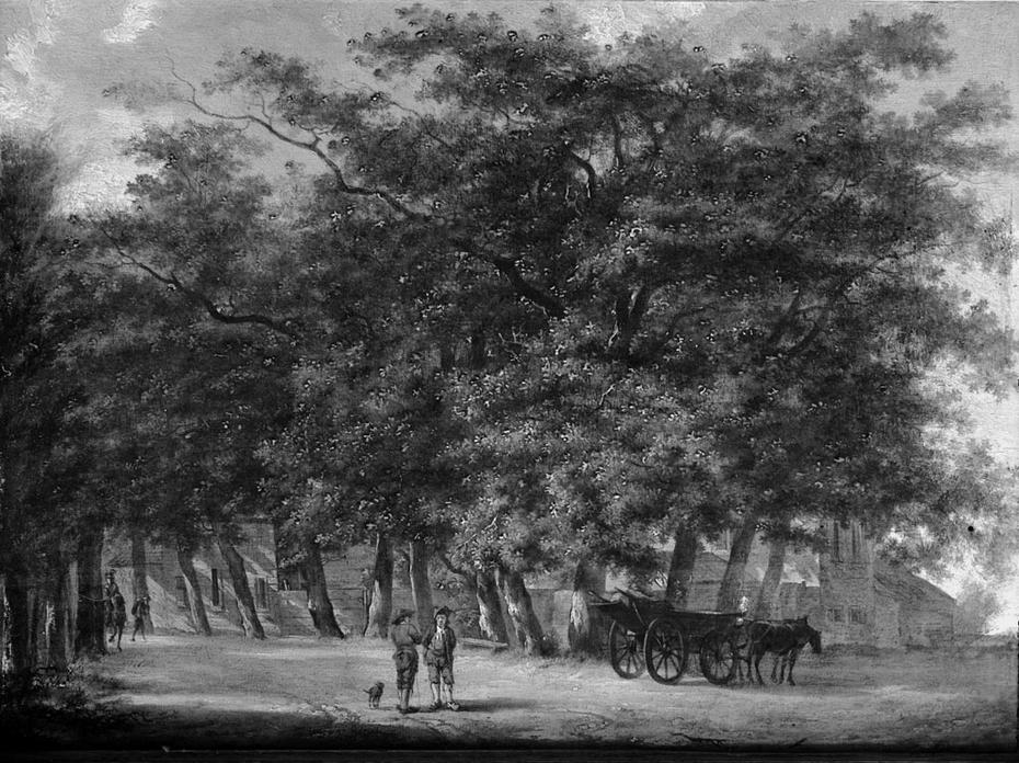 Route de campagne avec des arbres