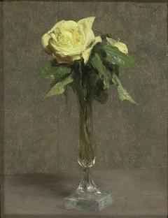 Still Life: A yellow Rose
