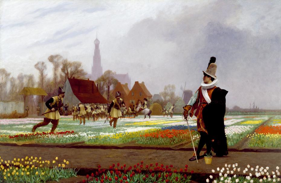 The Tulip Folly