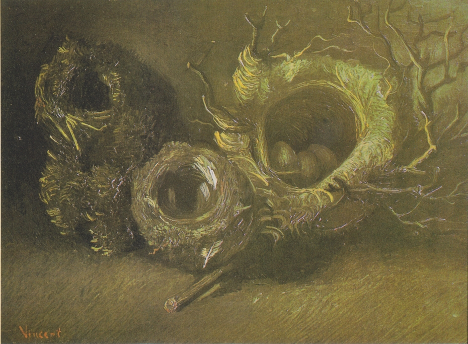 Still Life with three Birds-nest