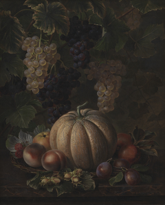 Various Fruits, including Melon and Grapes