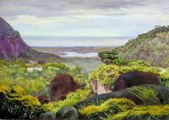 View near Tijuca, Brazil, Granite Boulders in the Foreground