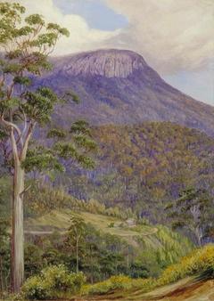 View of the 'Organ Pipes', Mount Wellington, Tasmania