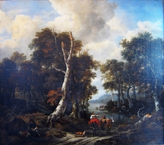 Wooded landscape with a flooded road