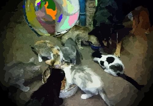 Antecesores del Panda Argentino Universal