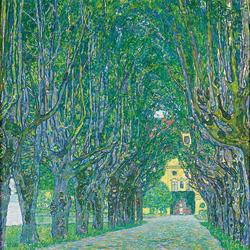 Avenue in the Park of Schloss Kammer