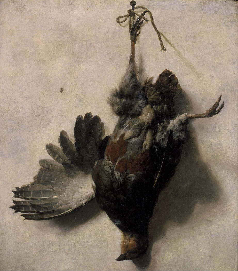 Dead partridge hanging from a nail