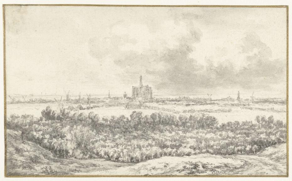 Gezicht op Haarlem over de duinen