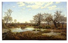La mare aux Fées in Fontainebleau