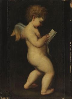 Lesender Amor (Nachfolger)