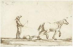 Paard dat een slee trekt