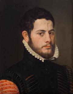 Portrait of a Man with Brow