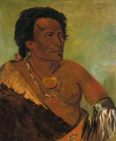 Sky-se-ró-ka, Second Chief of the Tribe