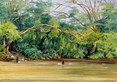 View of the Sandy River at Spanish Town, Jamaica