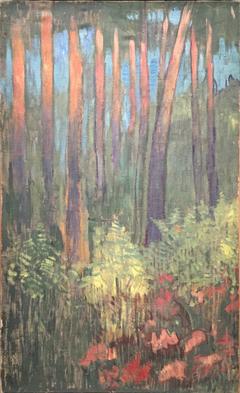 Arbres rouges et fougères en automne