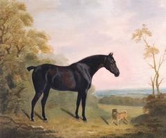 Bay Hunter and Pug Dog in a Landscape