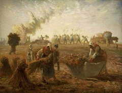 Buckwheat Harvest, Summer