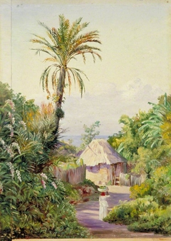 Date Palm and Hut near Craigton, Jamaica