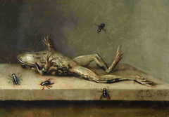 Dead Frog with Flies
