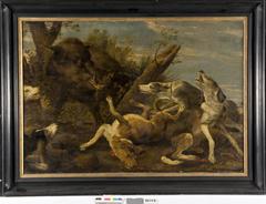 Een wildzwijn aangevallen door honden