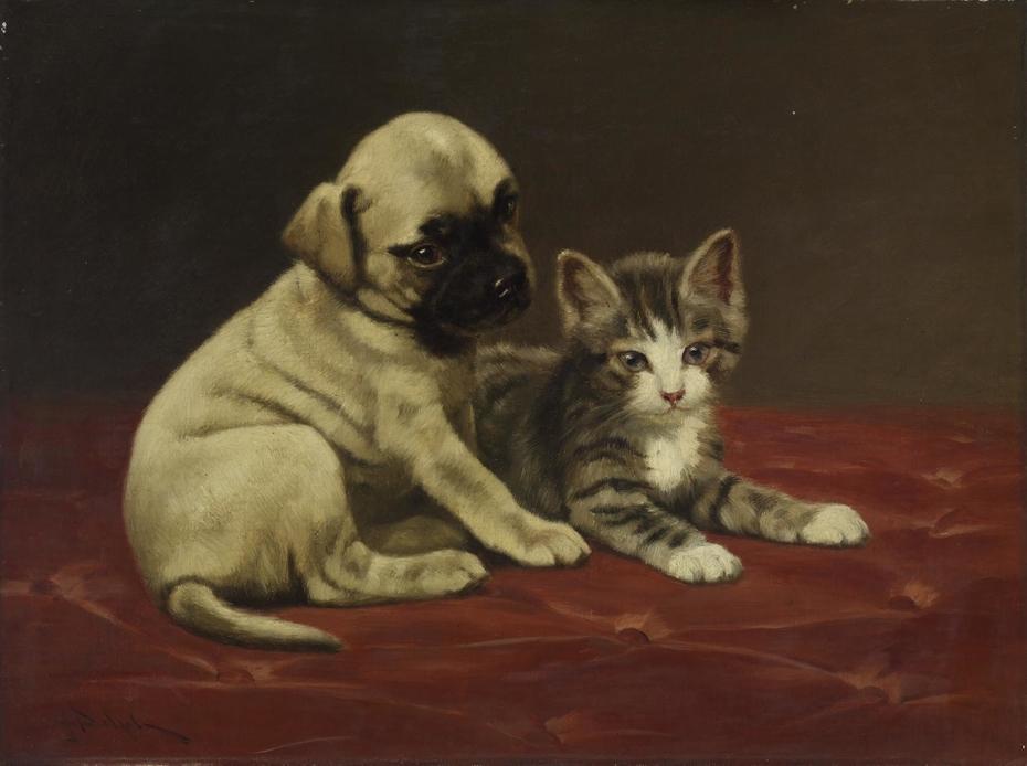 Good Friends (Puppy and Kitten)